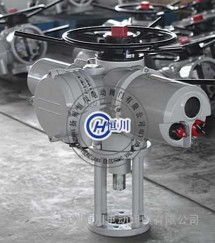 扬州恒川电动阀门有限公司 产品展示 罗托克电动执行器系列 iqt罗托克