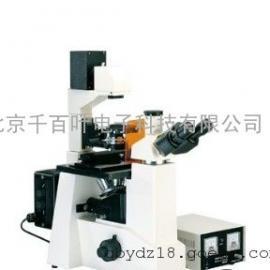 荧光显微镜SK-XTZ-Y3