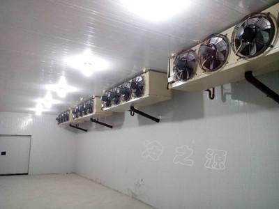 大型环保冷库工程专家建造