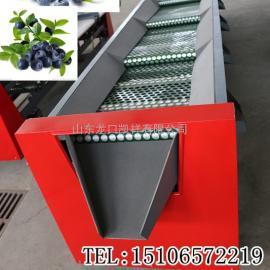 *新一代优质蓝莓选果机不伤果粉
