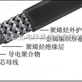 DBR-P/JF防爆防腐型电伴热带