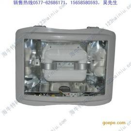 HN9520低频无极灯
