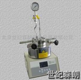 100ML微型反应釜