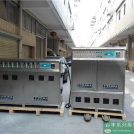 厂家直销百丰500g臭氧发生器
