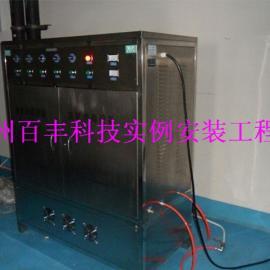 厂家批发300g臭氧发生器