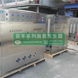大型食品车间杀菌臭氧发生器