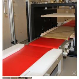 丹麦Tantec公司VacuLINE真空等离子处理系统