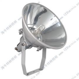NTC9200超强防震型投光灯