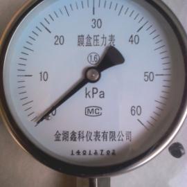 YE-100不锈钢膜盒压力表价格