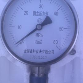 YE-100不锈钢膜盒压力表质量好价格低厂家直销