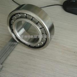 圆柱滚子轴承SL045018PP