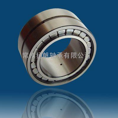 圆柱滚子轴承 SL045007-PP
