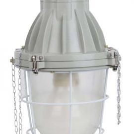 德力西BAD56-GW系列高频防爆无极灯