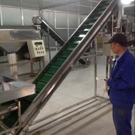 pvc食品输送机传送带裙边挡板爬坡输送机