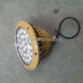 防水防腐防尘LED灯FAD-E-100g