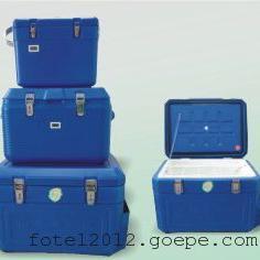 冷藏箱L91-1P温度计,保温箱带打印温度记录仪
