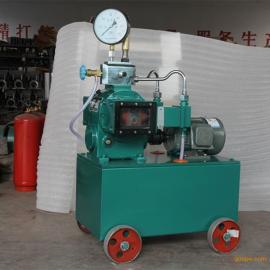2dsy双缸电动试压泵