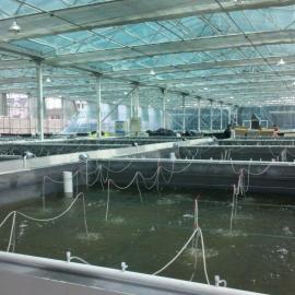 水产养殖环境在线监控系统