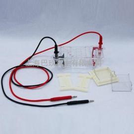 水平电泳仪电泳槽DYCP-31BN型供应