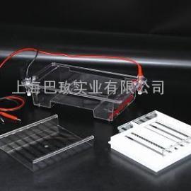 DYCP-31E型电泳仪 电泳槽,水平型