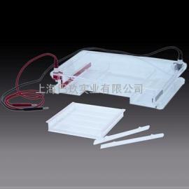 低价供应DYCP-31F型水平电泳仪 电泳槽