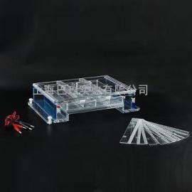 水平电泳仪 电泳槽DYCP-34A型厂家直销