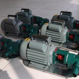 【WCB-50微小型齿轮油泵】