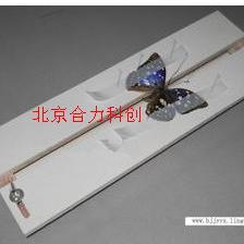 展翅板 昆虫标本制作工具 北京厂家 现货 批发