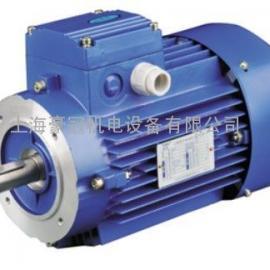 紫光变频电机/变频刹车电机