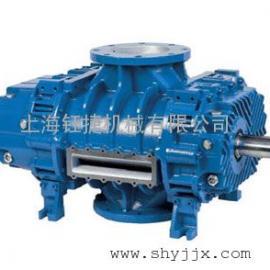 RB-DV系列三叶罗茨式高负压真空泵