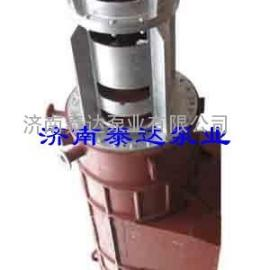 RZL型熔盐轴流泵
