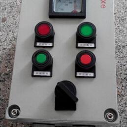 防爆操作柱LBZ-A2D2B1(150/1)K1