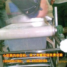 铁架双层蒸汽凉皮机 小型电动凉皮机