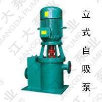 立式自吸泵,ZL系列立式自吸泵