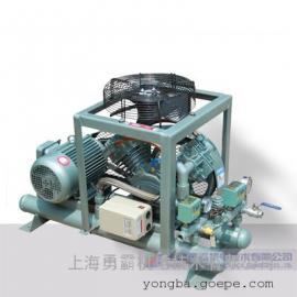 上海勇霸全无油氮气增压机价格,60立方防爆氮气增压机