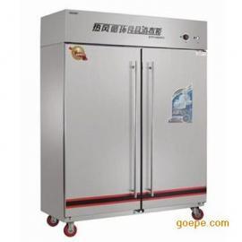 热风循环消毒柜 亿高RTP1000FC高温消毒柜 含磁板 带推车