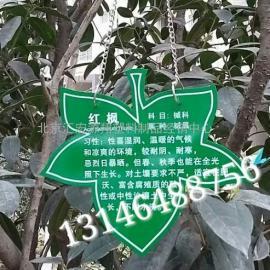 亚克力植物挂牌标牌批发价格