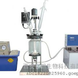 双层玻璃反应釜BL-1L双层玻璃反应釜价格