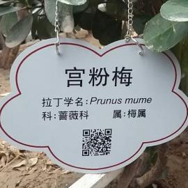 亚克力丝印植物铭牌