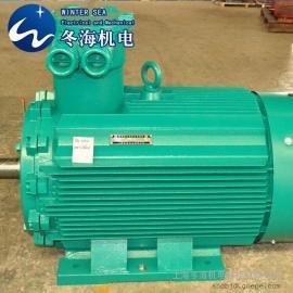 YB3防爆电机  250KW-6