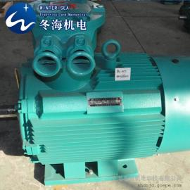 YB3防爆电机  75KW-10