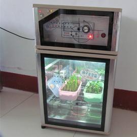 种子催芽箱
