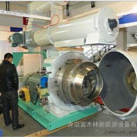 厂家直销环保颗粒机/颗粒生产线设备/环膜颗粒机/山东颗粒机
