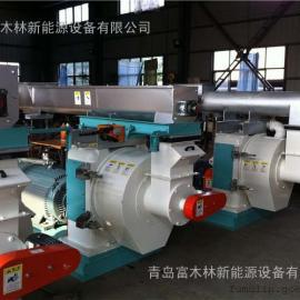 木屑颗粒机生产线设备/时产1吨颗粒设备/秸秆稻壳压棒机