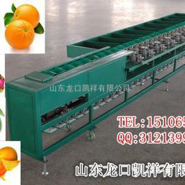 小型马铃薯分选机,小型猕猴桃选果机,小型水果选果机