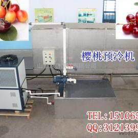 无损伤樱桃冷却清洗选果机设备