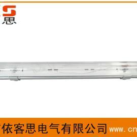 双管防水防尘防腐全塑荧光灯FPY-2*40W