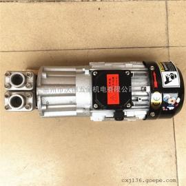 WRS-6091/300耐高温350度磁力泵 高温导热油泵