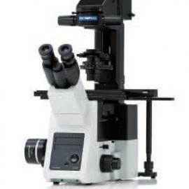 奥林巴斯荧光倒置显微镜IX73