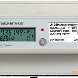 U1289全电子式多功能电能表-U1289